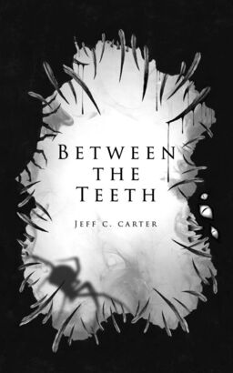 betweentheteethcover small.jpg